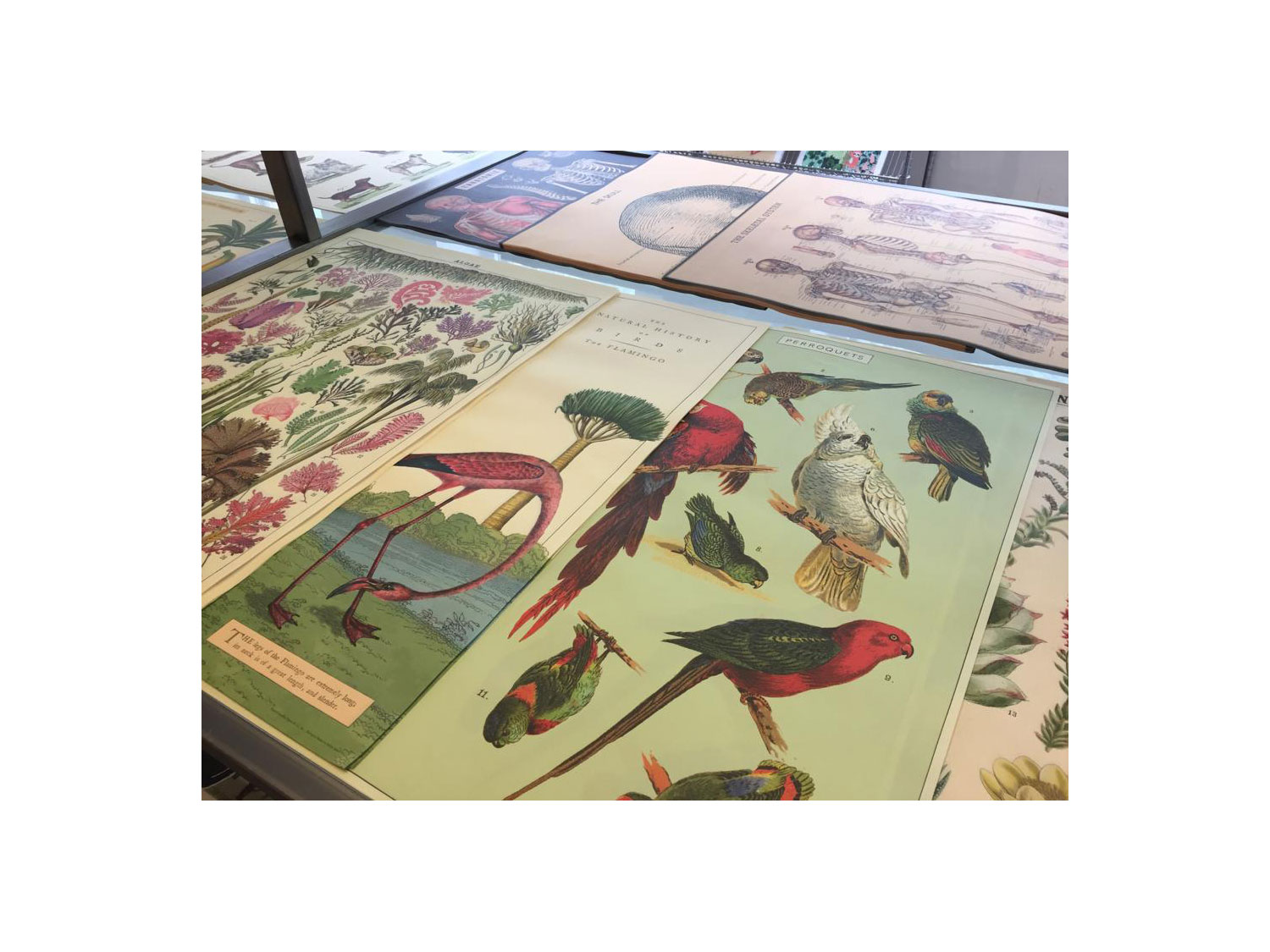 stationery walks - bloomsbury - london - paperchase