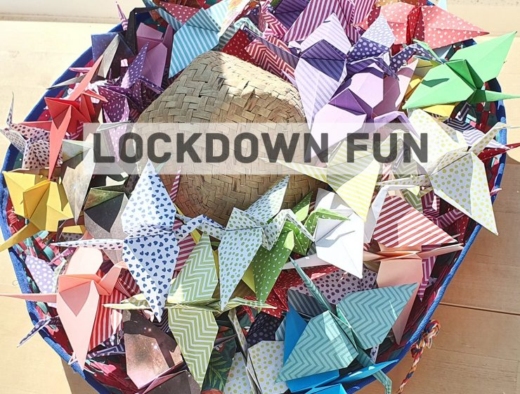 lockdown ideas from our readers