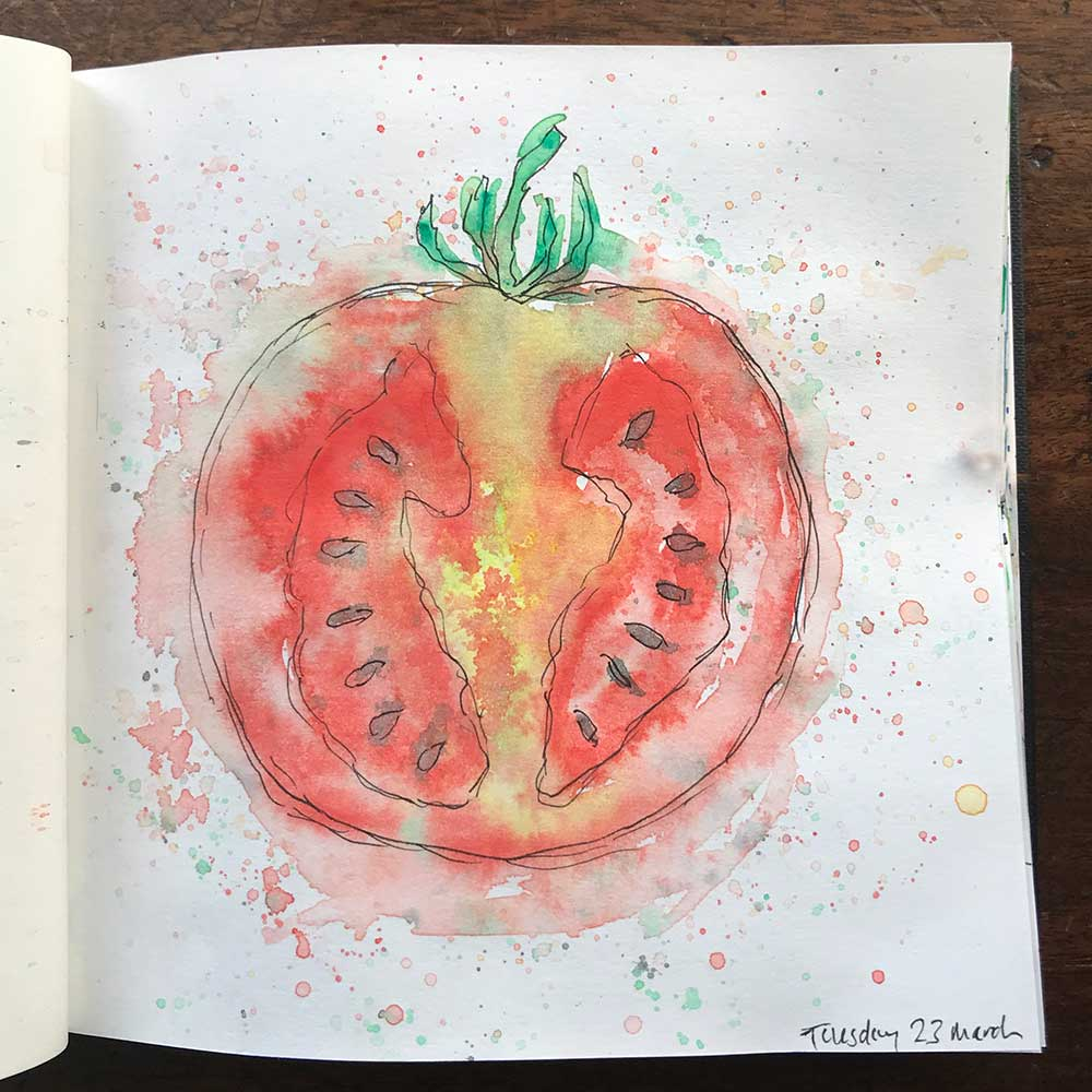 sketchbook day 23 - tomato