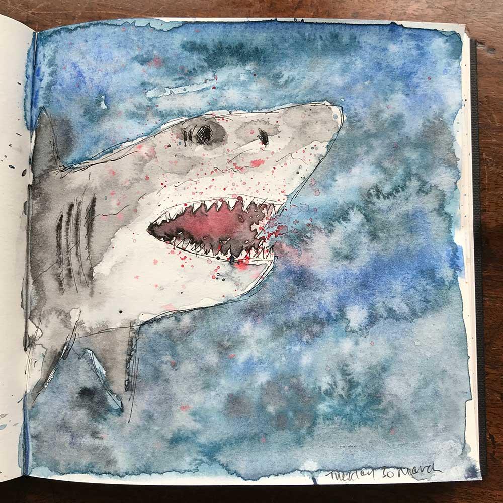 sketchbook day 30 - shark