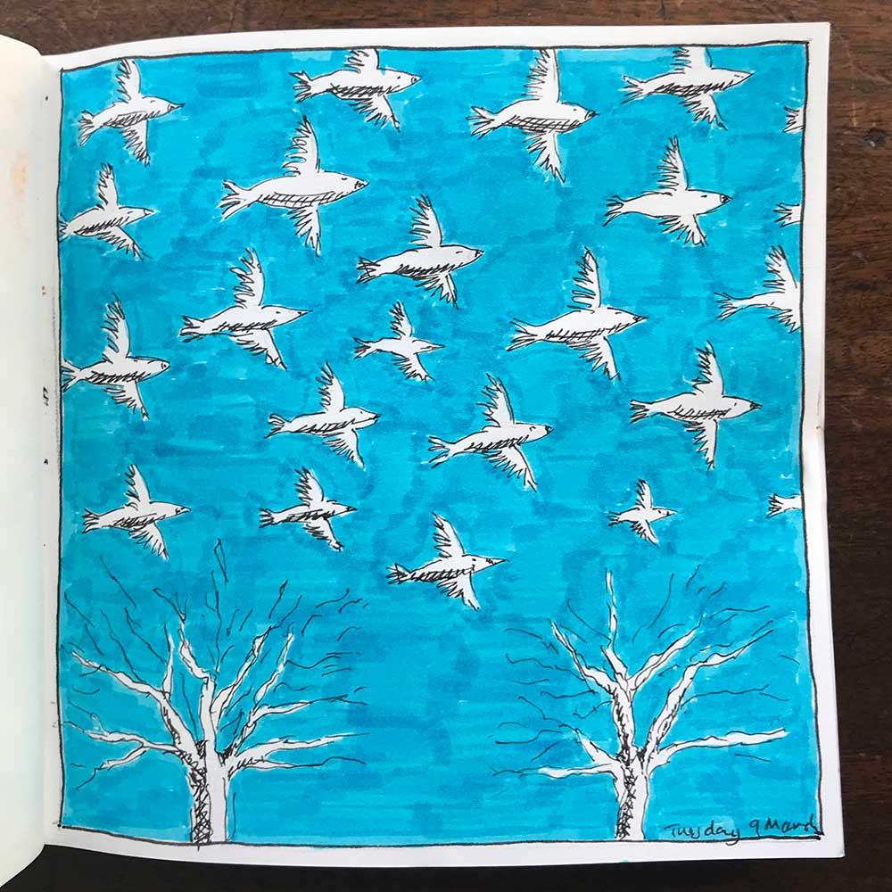 sketchbook day 9 - starlings
